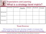 expectations and learning what is a strategy level matrix1