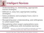 intelligent novices