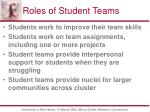 roles of student teams