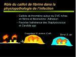 r le du caillot de fibrine dans la physiopathologie de l infection