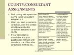 county consultant assignments