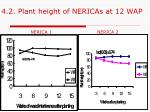 4 2 plant height of nericas at 12 wap