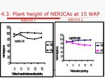 4 3 plant height of nericas at 15 wap