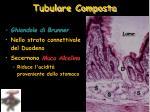 tubulare composta