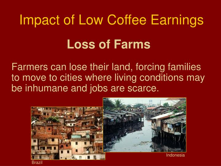 Impact of Low Coffee Earnings