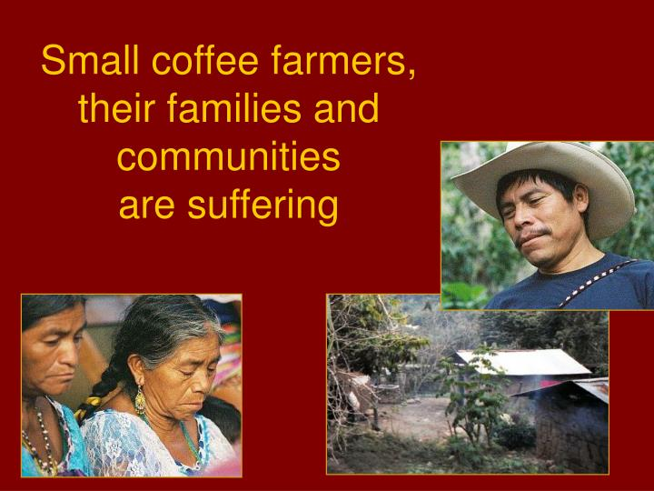 Small coffee farmers,