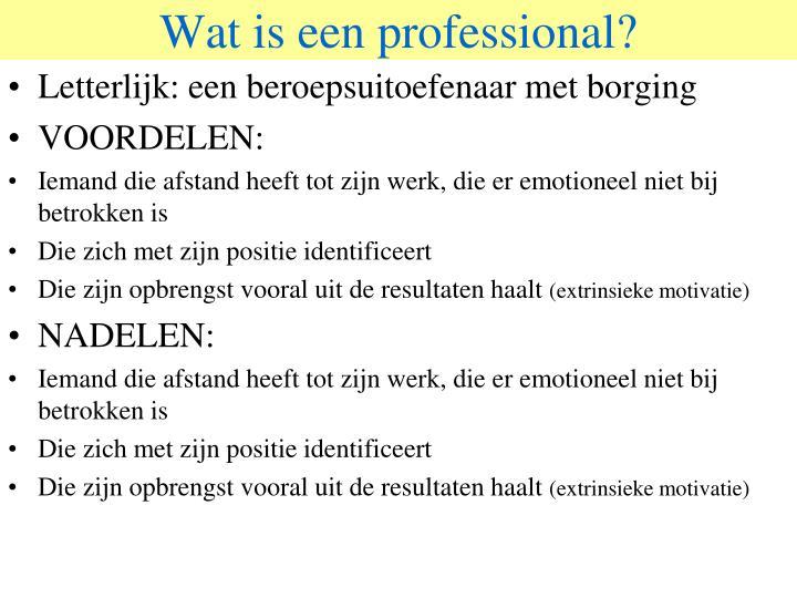 Wat is een professional?