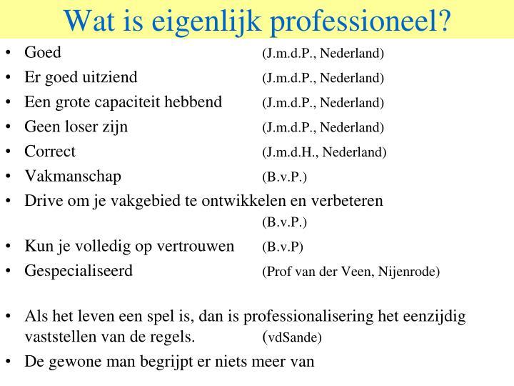Wat is eigenlijk professioneel?
