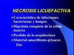 necrosis licuefactiva