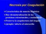 necrosis por coagulaci n