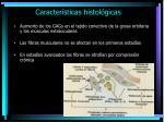 caracter sticas histol gicas