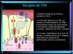 receptor de tsh1