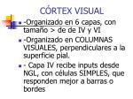 c rtex visual