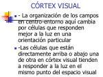 c rtex visual1
