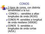 conos1