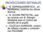 proyecciones retinales