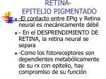 retina epitelio pigmentado2