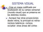 sistema visual1