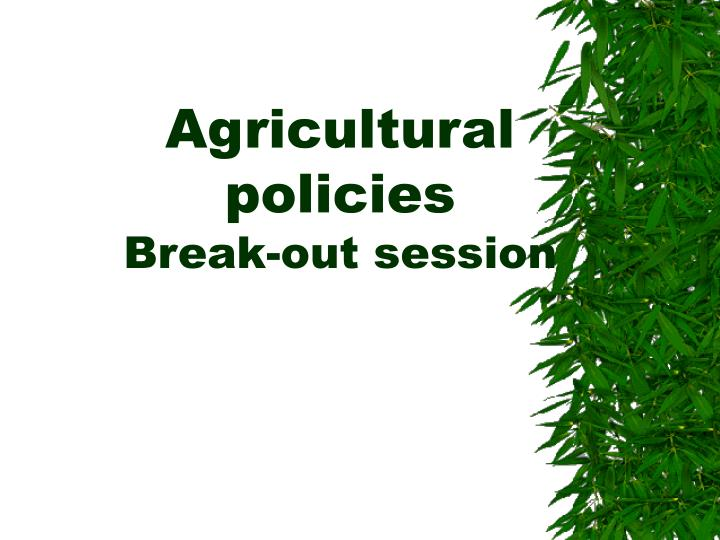 agricultural policies break out session n.