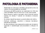 patologia e patogenia1