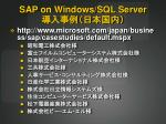 sap on windows sql server