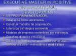 executive master in positive organizational development
