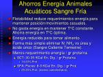 ahorros energ a animales acu ticos sangre fr a