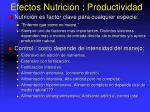 efectos nutrici n productividad