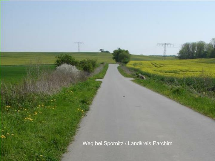 Weg bei Spornitz / Landkreis Parchim