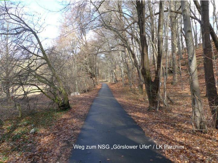 "Weg zum NSG ""Görslower Ufer"" / LK Parchim"