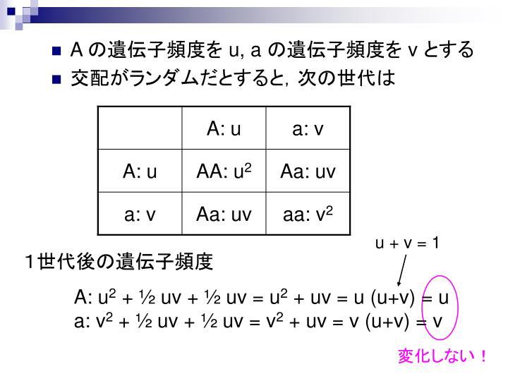 u + v = 1