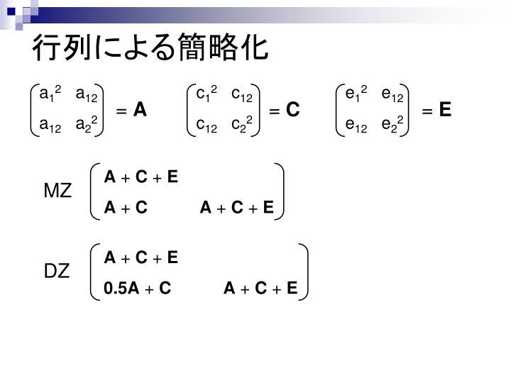 行列による簡略化