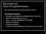 eksempel p interviewguide ramme