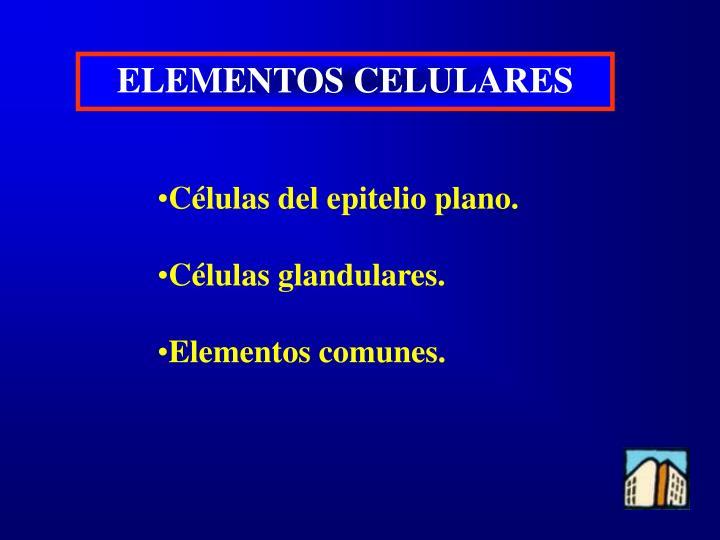 ELEMENTOS CELULARES