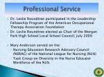 professional service4