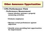 other assurance opportunities1