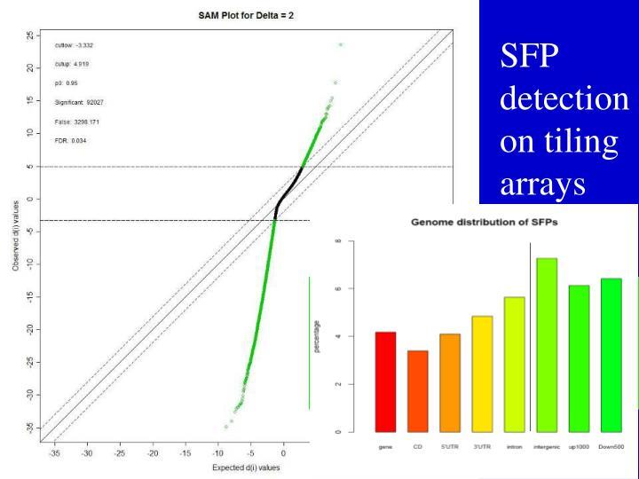 SFP detection on tiling arrays