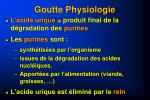 goutte physiologie