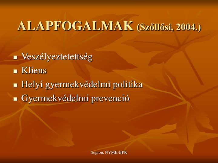 Alapfogalmak sz ll si 20041