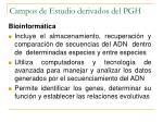campos de estudio derivados del pgh