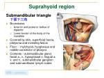 suprahyoid region1