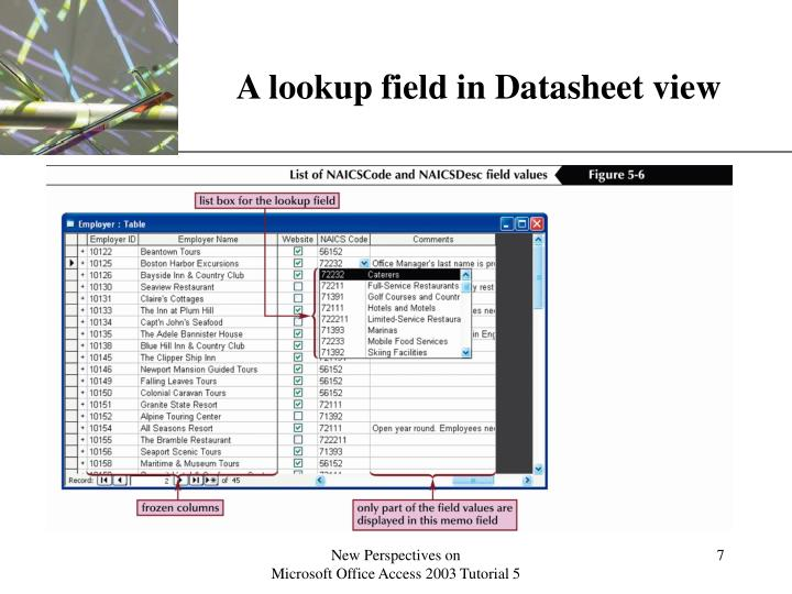A lookup field in Datasheet view