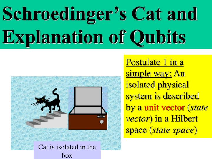Schroedinger's Cat and Explanation of Qubits