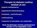 therapie bij diabetes mellitus bestaat uit een