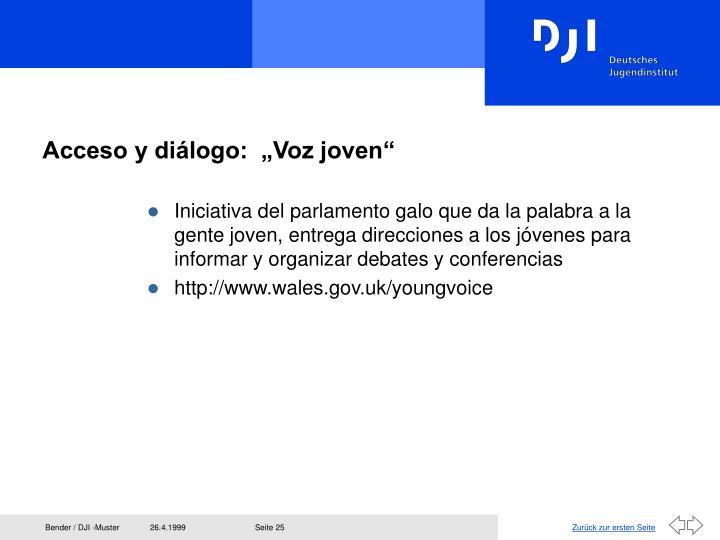 """Acceso y diálogo:  """"Voz joven"""""""