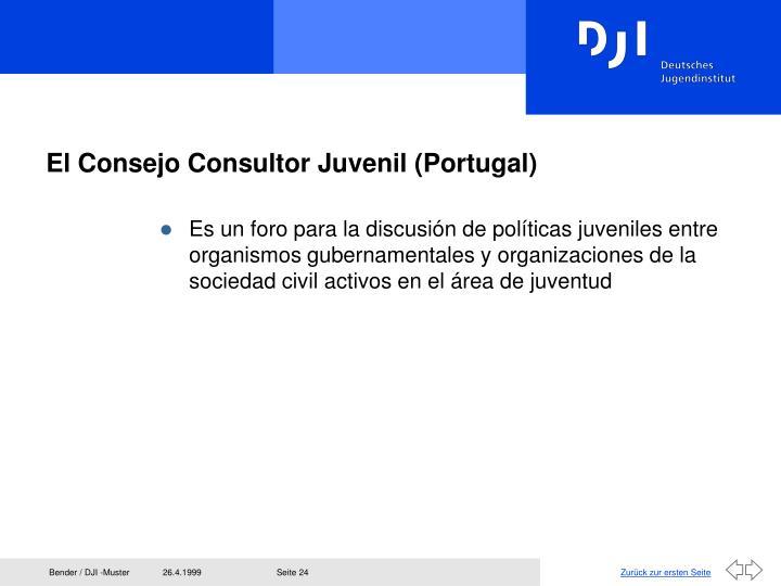 El Consejo Consultor Juvenil (Portugal)