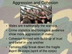 aggression and cohesion
