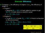 exercise efficiency1