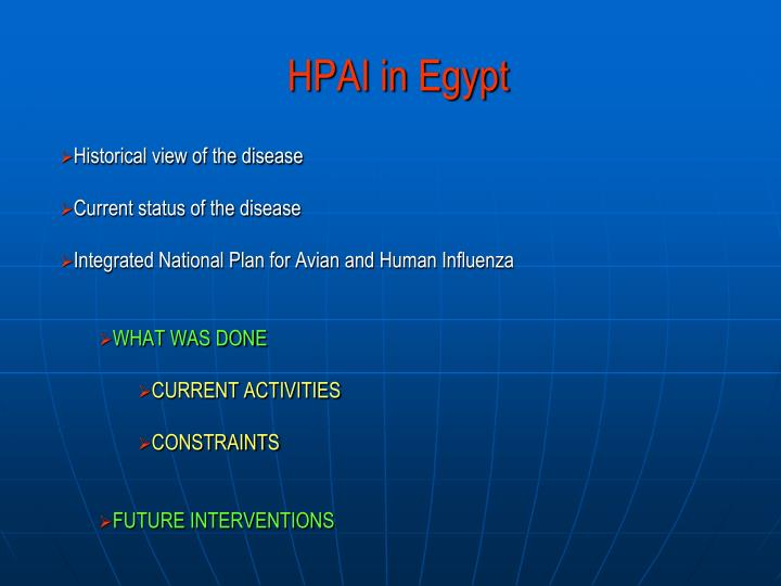 Hpai in egypt