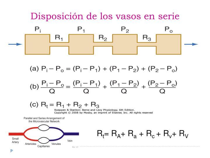 Disposición de los vasos en serie